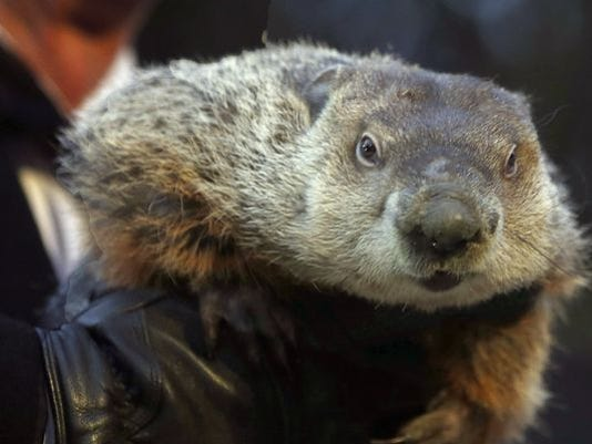 635900035959822362-1391178468000-AP-Groundhog-Day.jpg