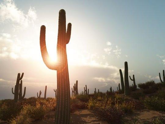 Calor en Phoenix