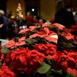 Louisiana Tech poinsettia auction breaks record, helps fund student scholarships