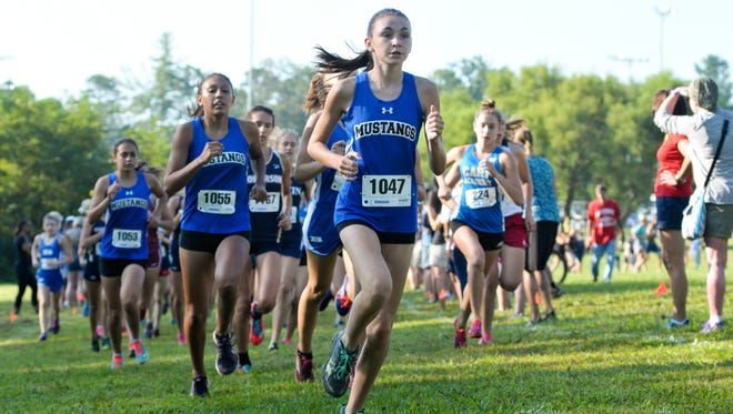 Runners compete in Saturday's Western North Carolina Cross Country Carnival at Jackson Park in Hendersonville.