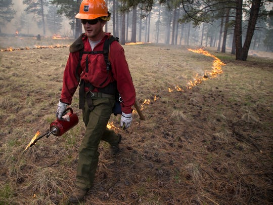 A Forest Service wildland firefighter uses a drip torch