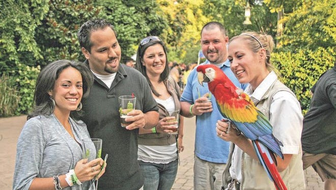 Visit exotic wildlife while sampling craft beer during Brew at the Zoo.