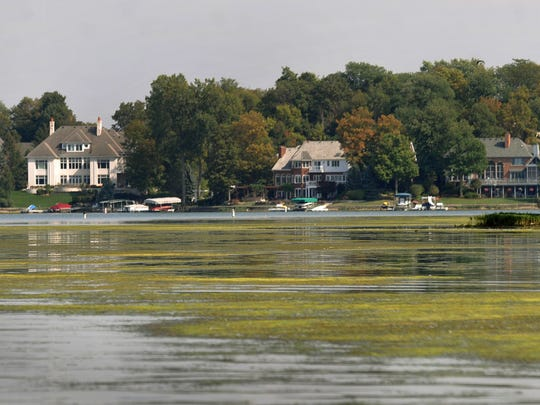 Like a green carpet spreading out from an island, algae and other invasive water plants coat the surface of Geist Reservoir Wednesday September 18, 2013. The plants and zebra mussels have combined to make life difficult for boaters, fouling center boards of sailboats, wrapping around motorboat propellers, and fouling the intakes of jet skis.