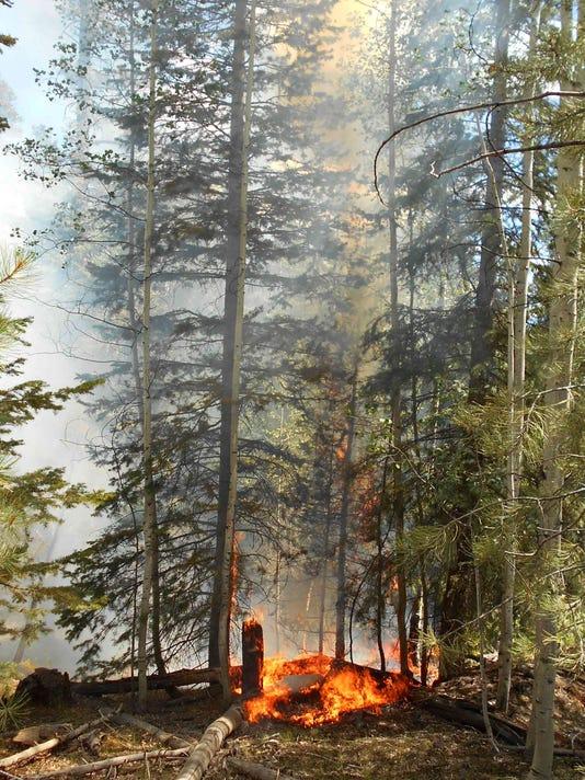 STG gc fires01 0731.jpg