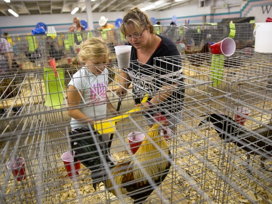 Corianna Stock, left, and Heather Thompson clean their rooster's cage Tuesday during the poultry show at the 2017 San Juan County Fair at McGee Park.