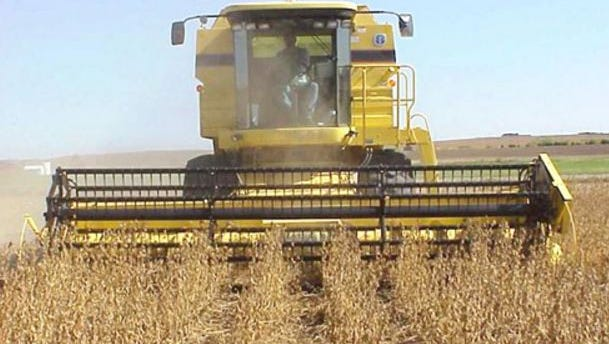 Wisconsin producers intend to plant 2.20 million acres of soybeans this year, a 50,000 acre increase from 2017, according to the USDA Prospective Plantings report released on March 29.