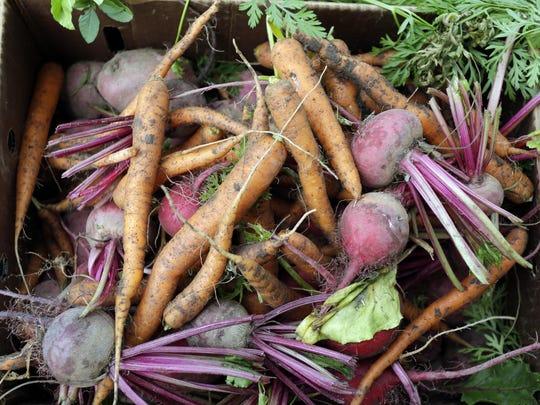 Box full of fresh-picked vegetables