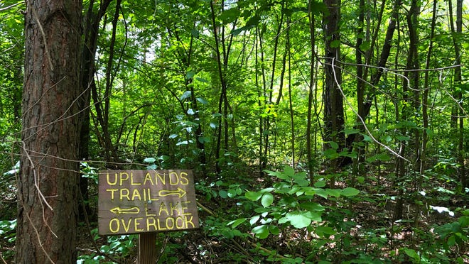 From the uplands of Onanda Park you can follow a two-mile trail with gorges, overlook and much more.