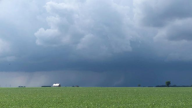 Storm clouds appeared above a Livingston County soybean field last weekend.
