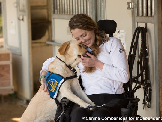 A Canine Companions service dog.