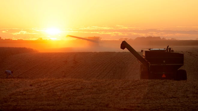 A central Illinois corn and soybean farmers race against the setting sun to harvest his cornfield in Loami, Ill., Monday Oct. 5, 2009. (AP Photo/Seth Perlman)   ORG XMIT: ILSP202