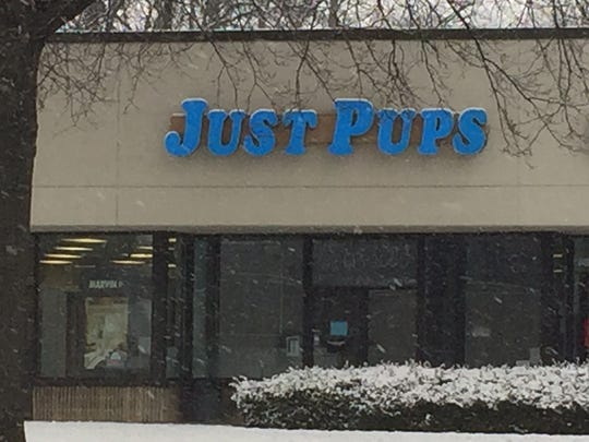 Just Pups owner Vincent LoSacco has been charged with more than 200 counts of animal cruelty.