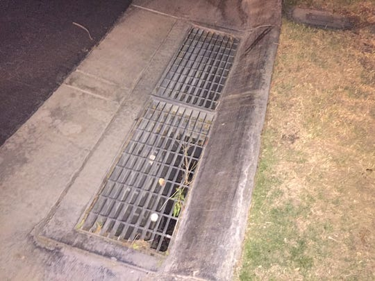 Ducklings were rescued after falling into this storm drain at Oasis Country Club in Palm Desert, according to the Riverside County Department of Animal Services.