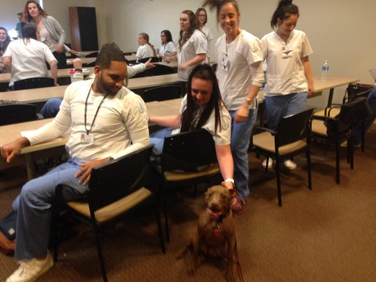 Our Lady of Lourdes School of Nursing students take some time to relax with therapy dog Aladdin.