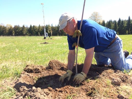 Crossroads at Big Creek Board of Directors President Dick Weidman helped plant the Jim Maki Arboretum last week.