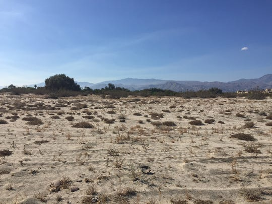 A five-acre plot of land has been set aside for a pet cemetery at Desert Memorial Park in Cathedral City. This parcel is just south of McCallum Way.