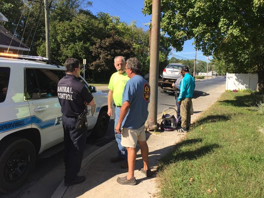 In this Oct. 21, 2016 photo, the operator of a Salisbury Animal Control van (left) talks to tow truck drivers after his vehicle collided with another motorist at the intersection of Church and Truitt streets about 2 p.m.  In the distance is  the driver of the other vehicle involved in the crash and his infant daughter, who was restrained in a back seat. No one was injured.