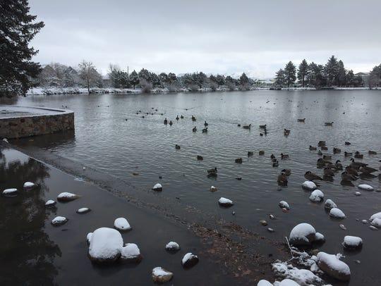 Virginia Lake Park under a blanket of snow Thursday,