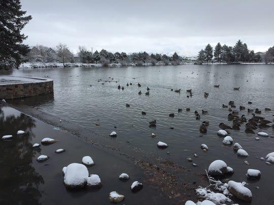 Virginia Lake Park under a blanket of snow Thursday, Jan. 5, 2017.