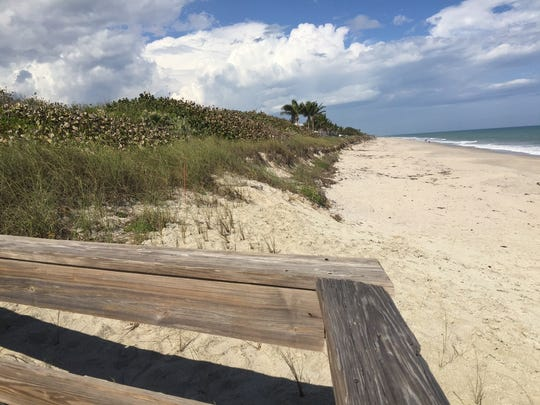 This dune, shown from Indian River County's Tracking Station Park Feb. 7, 2017, is part of a 5.4-acre parcel Indian River Shores Town Council sold at auction to a developer in 2017.