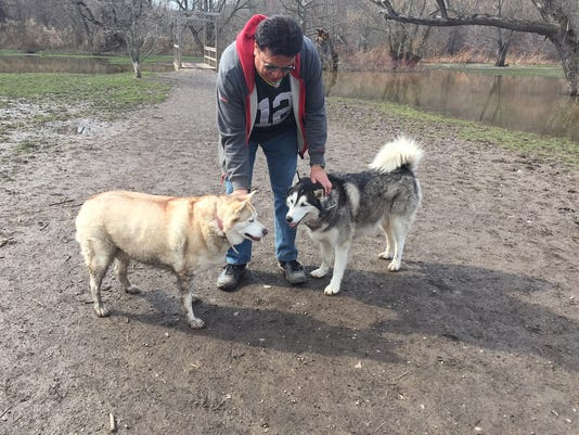 Sasha (left) and Niko with owner Frank Palermo in dog park at Ellison Park