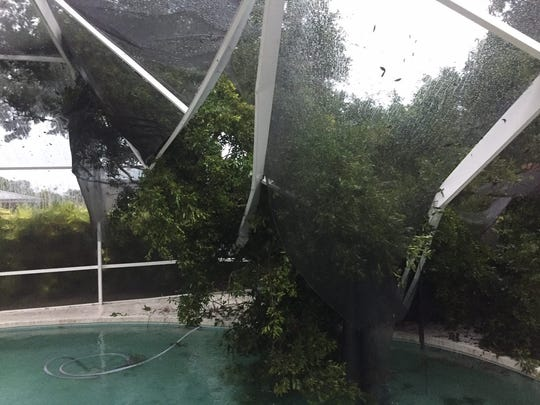 """A tree broke through the pool screen of Poinciana Village resident Beth Preddy. She said it was a """"gigantic limb from the neighbor's oak."""""""
