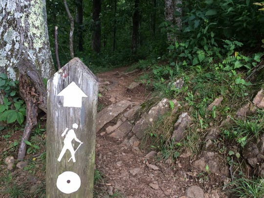 The Mountains-to-Sea Trail is blazed, or marked, with white circles.