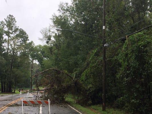 636407361784217143-tree-down.jpg
