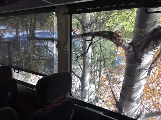 A branch broke and broke a bus window in the Judith Mountains north of Lewistown.