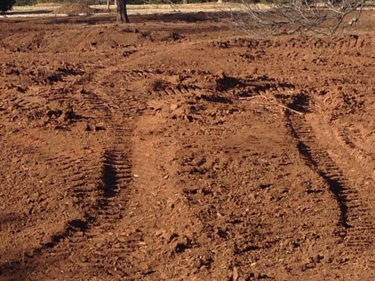 A view Monday of dirt and heavy tread marks at the former prairie dog enclosure at Kiwanis Park. The city is planning a new, larger enclosure for the animals in a few weeks.