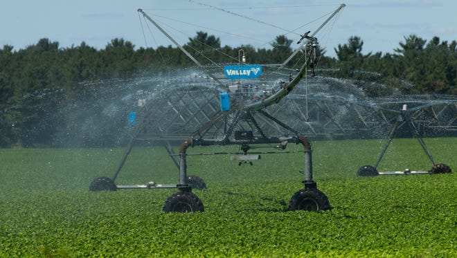 An irrigation system waters crops in Algoma.