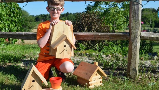 Zach Boldt, 11, poses with several of the wooden birdhouses that he sells for the Walk MS charity.