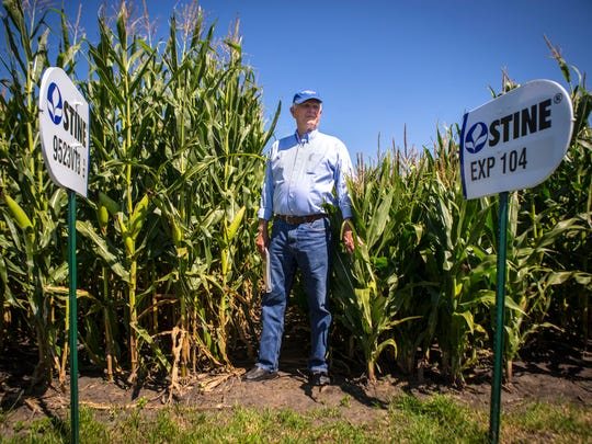 Seed entrepreneur Harry Stine's Adel-based business is the world's largest privately held seed company. Stine, shown here at his Adel, Iowa, demo field, hopes Chinese farmers adopt his idea for planting corn in narrower rows, boosting the plants per acre.