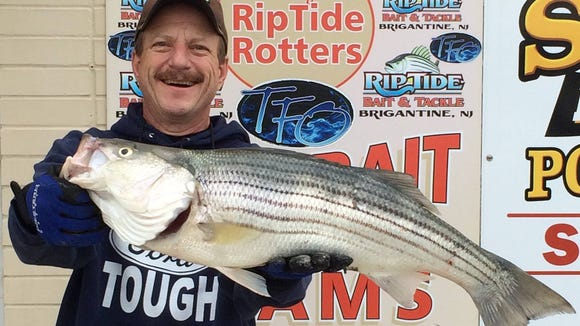 """Gene Guglielmi was in the back bays of Brigantine on his kayak and nailed a 30"""" 10 lb., striper that fell for a 6.5"""" Gulp Nemesis, chartreuse color."""