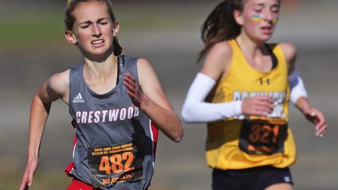 Crestwood's Zoë Simmons, left, made state in 2019.