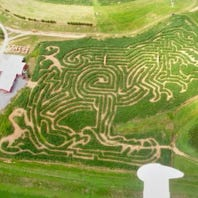 Corn mazes in central Pa.: Where you can go to 'get lost'