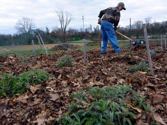 PHOTOS: Gardening at Horn Farm