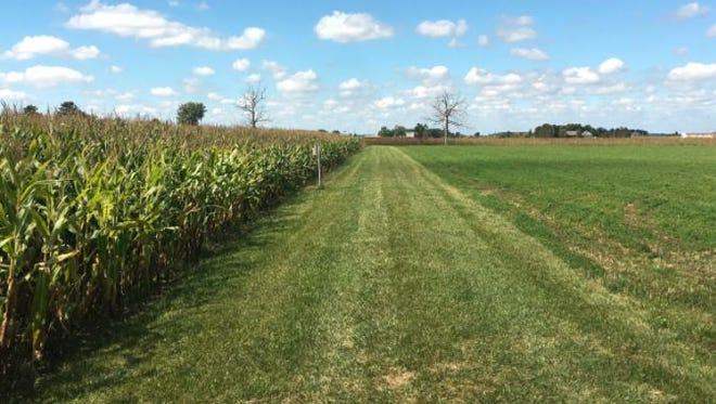 Tight crop margins create both challenges and opportunities as producers prepare for the 2018 cropping season.