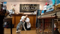 Puppy saved from euthanasia now brings joy to customers at York gift shop