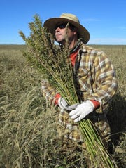 Hemp chef Derek Cross