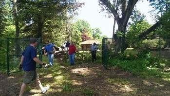 Volunteers Clearing Debris at Duke Farms.