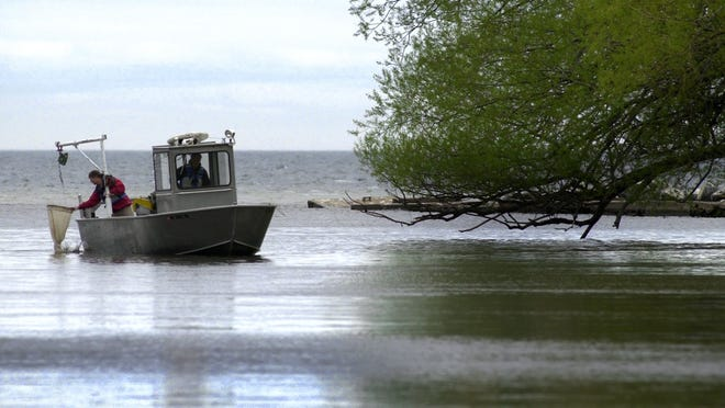 Louise Slaughter and 51 other House representatives, both Democrats and Republicans, want to keep funding of the Great Lakes Restoration Initiative at its current level.