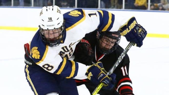 The Wausau West and SPASH boys hockey teams are seeded No. 1 and No. 2, respectively, for the WIAA boys hockey playoffs.