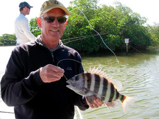 Tom Gartland was fishing the estuaries when he snagged this 16-inch sheepshead.