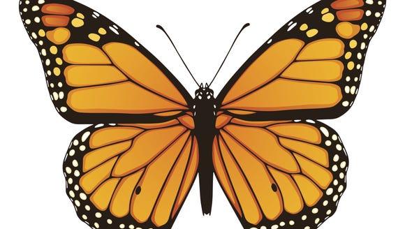 Mt. Pisgah State Park will host a program on butterflies