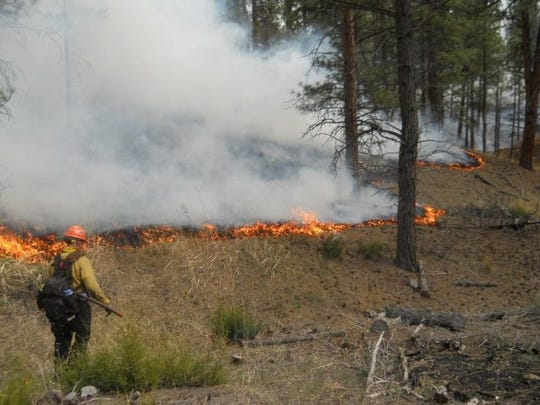 A prescribed fire occurs along Jimtown Road in Helena. Helena-Lewis and Clark National Forest has OK'd a plan to restore some 22,000 acres in the Castle Mountains using a combination of treatments including prescribed fire and mechanical treatments.