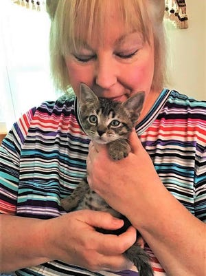 FOTAS volunteer Mindy Hand holds foster kitten Dewey, who was adopted this week.