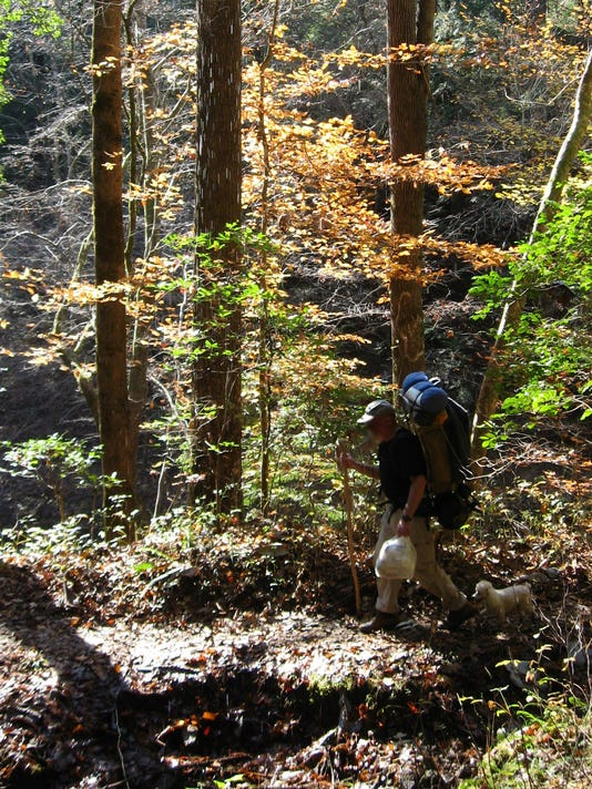 636232678590259033-Bankhead-National-Forest.jpg