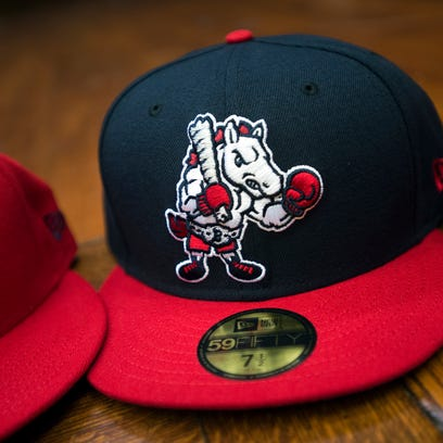 HOP ON BOARD: Rumble Ponies to play ball