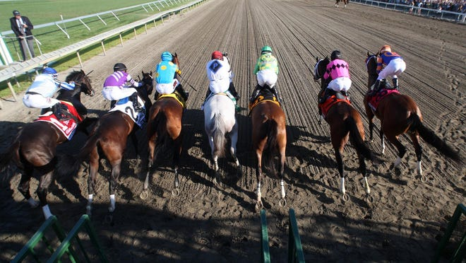 Horses burst from the starting gate at the start of the William Hill Haskell Invitational on at Monmouth Park in Oceanport.